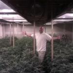 Cannabis Production - Indoor Garden